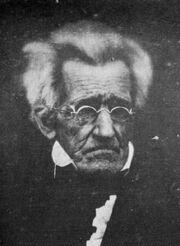 Andrew Jackson-1-.jpg