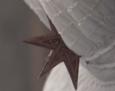 Diabelskagwiazda