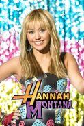 Hannah Montana Chicken Nuggets