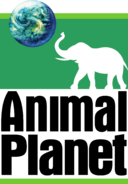 Animal Planet (1996-2006, cerni napisi)