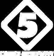 Пятый канал (1994-1995, использовался в ТВ-Парке, белый)