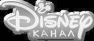 Канал Disney (третий логотип во время передач, 1 августа 2014 - 31 августа 2017)