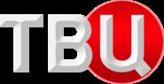 ТВ Центр (2013, во время часов)