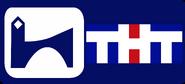 ТНТ-Губерния (г. Воронеж) (2000-е, эфирный)