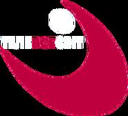 Телевсесвит (белый логотип)