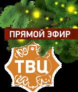 ТВ Центр (2014-2015, новогодний, прямой эфир)