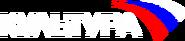 Культура (2004-2009) (использовался в эфире)