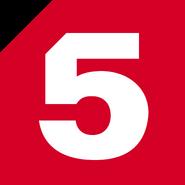Пятый канал (с 2008, эфир)