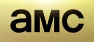 AMC (2013)
