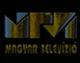 MTV 1 1993-1994