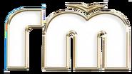 Городской телеканал (другой вариант)