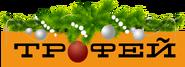 Трофей (2019-2020, новорiчний)