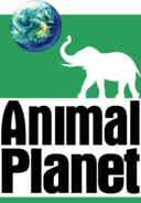 Animal Planet (1996-2006, cerni napisi, drugi variant)