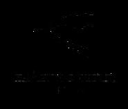Ера (1999-2001)