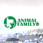 Animal Family HD (второй логотип, фон)