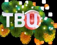 ТВ Центр (2020-2021, новогодний)