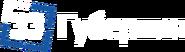 33 Губерния (горизонтальный сине-белый логотип)
