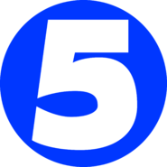 5 канал Украина (микрофон, синий круг)