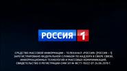 Россия 1 (СоР СМИ, ноябрь 2020)