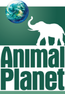 Animal Planet (2000-2006)