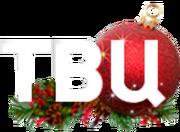 ТВ Центр (2015-2016, новогодний) (использовался на сайте)