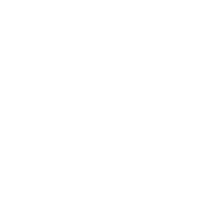 Ямал-Регион (белый плоский логотип)