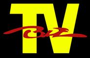Biz-TV (микрофонный)