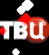 ТВ Центр (новогодний, 2013-2014)