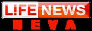 LifeNews Neva