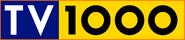 TV1000 (1995-2000)
