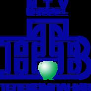 НТВ (1994-2001, использовался в бейджиках)