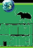 Animal Planet (1996-2006)