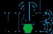 НТВ (1994-1997, чёрный цвет)