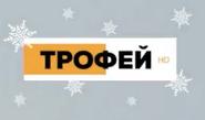 Трофей (НГ, 2020-2021)