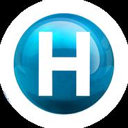Новий канал (четвертый логотип - зимний)