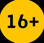 Возрастное ограничение 16+ (Каналы Медиагруппы Украина, с 2016)