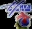 Ника ТВ (новогодний 2012-2013)