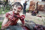 The Walking Dead Season 2 201
