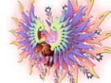 Phoenix Cantus