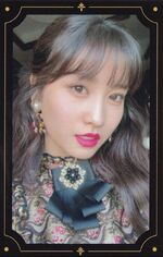 The Year of Yes Momo PC 2