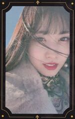 The Year of Yes Momo PC 3