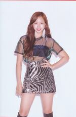 Yes Or Yes Ver B Scan Mina