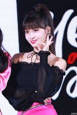 Yes Or Yes Showcase Momo 6