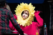 Yes Or Yes Sinchon Fansign Mina 7