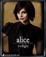 Alice in Twilight