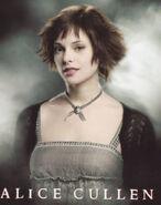 Alice-Twilight-1