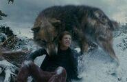 Werewolves 13