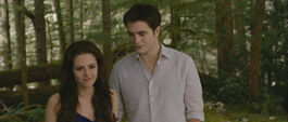 Bd2-bella-edward-500