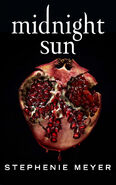 Midnight Sun (FRA)