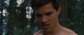 Jacob-growl-bd2